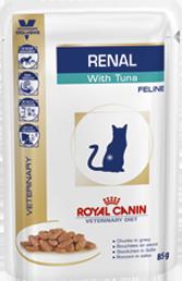 Renal umido gatto
